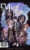 Harry Potter The Graphic Novel by theintrovert