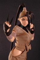 Limited Ed Ibuki 1:4 scale mixed media 4 by chiseltown