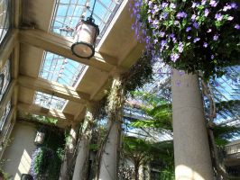 Longwood Gardens 2 by ShelbyGT-500KR