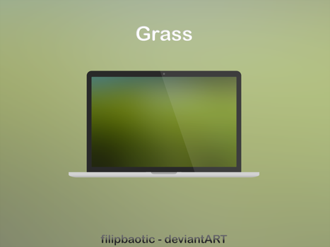 Grass by filipbaotic