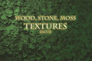 Wood Stone Moss Texture Photoshop Brushes PART 2 by Zicue