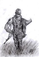 Soldier in the field by bozoloko