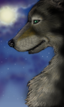 Wolf by Ruth-Tay