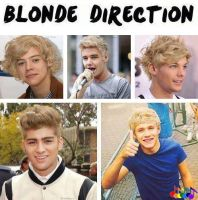 Blonde Direction? by SonicScrewdriverDD3