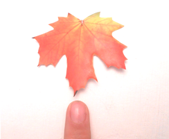 Recycled handmade leaf charm by MiniSweetx