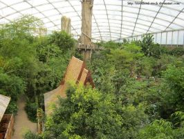 Indoor tropical Rainforest 27 by Bloodsoul-Stock