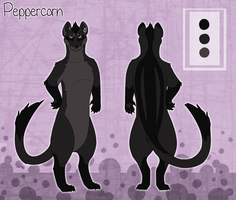 Peppercorn Ref Sheet by Kingfisher-Gryphon