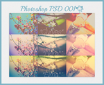 FREE Photoshop Coloring PSD's 001 by ShekFilters