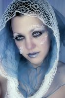 Ice Queen 1 by laurna