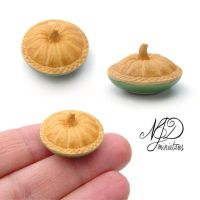 A Differnet Kind of Pumpkin Pie - NJD Miniatures by NJD-Miniatures