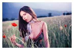 A flower for you by Ciril