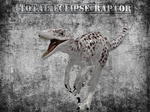 Total eclipse raptor by KaitouCat