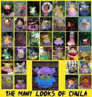 The Many Looks of Chula by pikabellechu