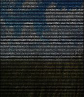 ASCII in the Everglades by boomerangs-stash