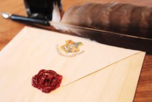 Hogwarts Acceptance Letter by sophielouisephotos