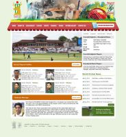 Design Interface for Cricket Website by zohaibusman