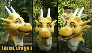 taren dragon head by joecifur
