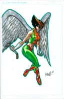 Hawkgirl LBCC by RAHeight2002-2012