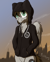 A Punk Pony And His Hoodie by Punk-Pegasus