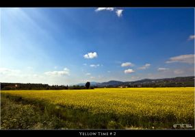 Yellow Time_2 by Marcello-Paoli