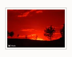 Infra Red trial by kilted1ecosse