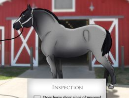 Inspection by Rising-High-Ranch