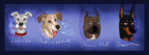 Dog Breeds .:Part 1:. by ScottishRedWolf