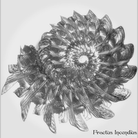 Olde Tyme Textbook Fractal by kofferwortgraphics
