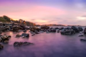 purple morning by vladinarium