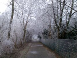 Winter Landscape Way by fusuky