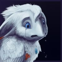 Don't Go by Silverbirch