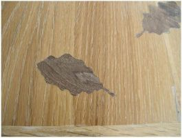 detail on oak table 2 by RushInBrain