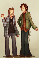 Dean and Sam by purplesam