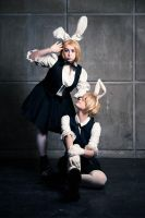 len and rin rabbit by narutine