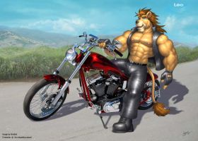 Biker Kitty by BRAFORD