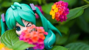 Miku in Taiwan by Kodomut