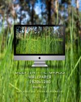 Deep in the grass wallpaper by Eternal-Polaroid