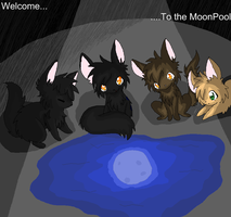 Welcome to the MoonPool by Nixhil
