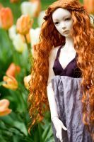 Amongst the tulips by anarkistbavern