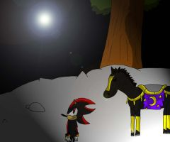 Shadow and Shadow Runner by Erazor91