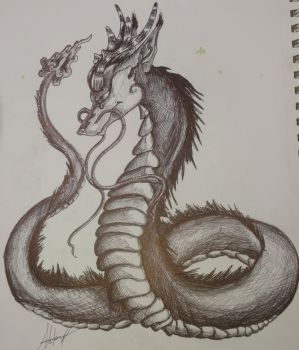 Chinese Dragon by wolf-karpova