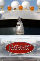 Peterbilt by Wolfje1975