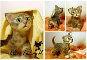 "Little kitten ""Timoshka"" by KittenBlackUA"