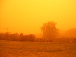 dust storm by alcohobo