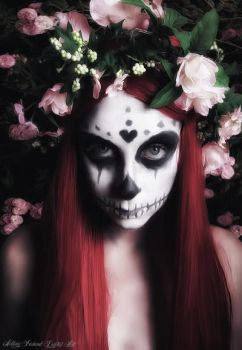 Scull Lady by blastevil