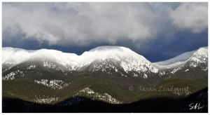Snow Capped by Momenti-Photo