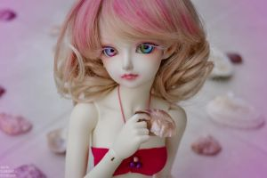 Pink shell by AidaOtaku-BJD
