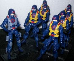 officer and his troops by lovefistfury