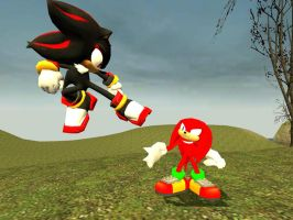 Request: Knux VS Shadow by 33482