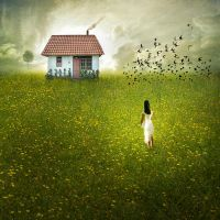 In Pursuit of Happiness by Ananyana